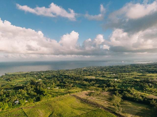 27-476 Indian Tree Rd, Pepeekeo, HI 96781 (MLS #643935) :: Corcoran Pacific Properties