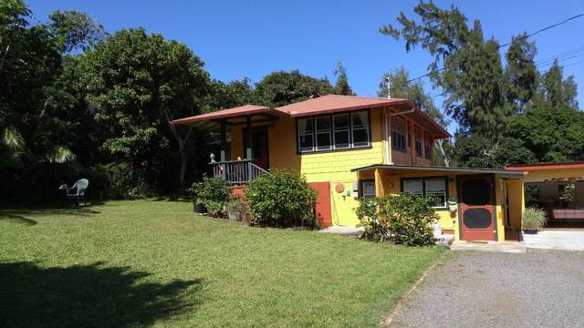 55-492 Ilina Rd, Hawi, HI 96719 (MLS #643966) :: LUVA Real Estate