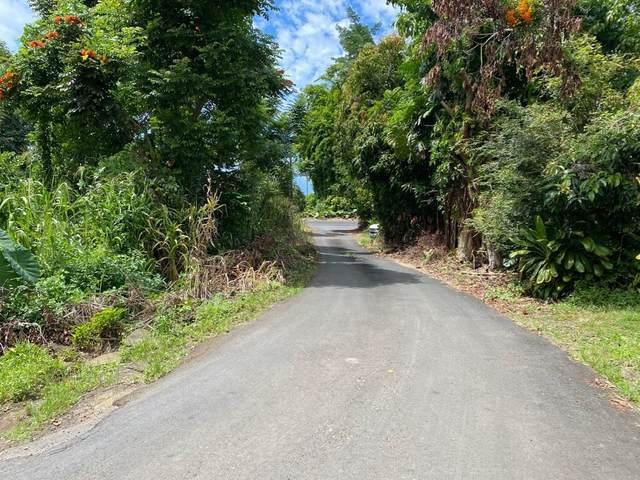 83-5404 Hawaii Belt Road, Captain Cook, HI 96704 (MLS #643976) :: Steven Moody