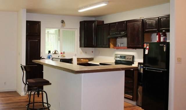 14-3461 Shell Rd, Pahoa, HI 96778 (MLS #643999) :: Corcoran Pacific Properties
