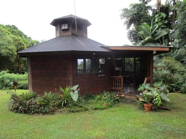 29-2081 Old Mamalahoa Hwy, Honomu, HI 96710 (MLS #644127) :: Corcoran Pacific Properties