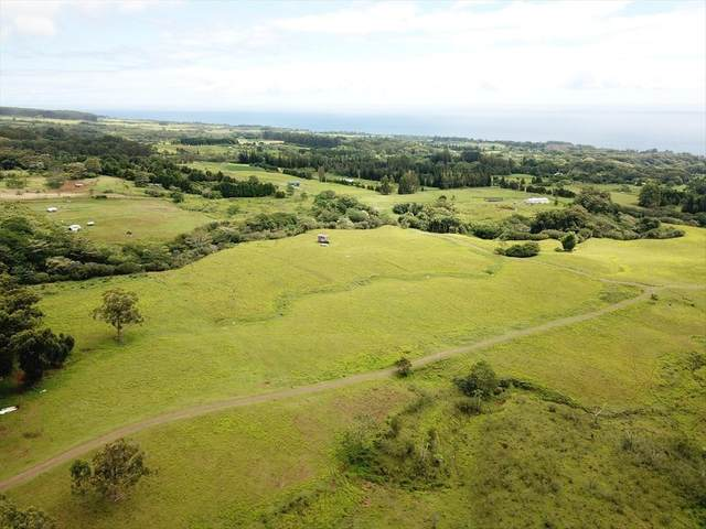 Address Not Published, Hakalau, HI 96710 (MLS #644256) :: Aloha Kona Realty, Inc.