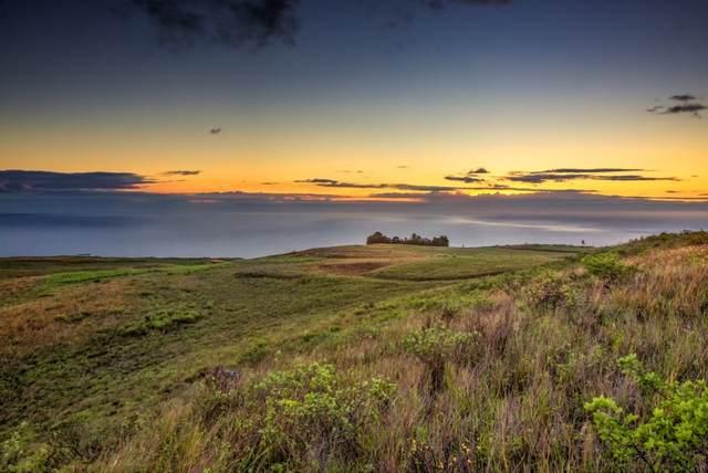 Kalama Wy, Kamuela, HI 96743 (MLS #644295) :: Aloha Kona Realty, Inc.