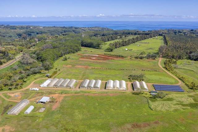 Kahiliholo Rd, Kilauea, HI 96754 (MLS #644354) :: Iokua Real Estate, Inc.