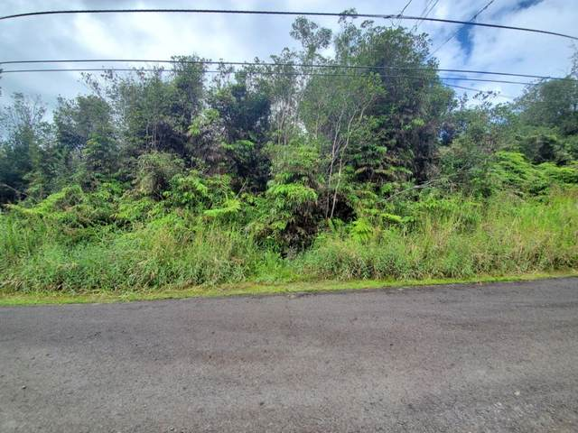 Hinuhinu St, Volcano, HI 96785 (MLS #644371) :: LUVA Real Estate