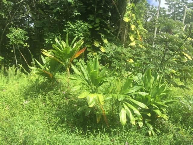 15-2789 S Opakapaka St, Pahoa, HI 96778 (MLS #644373) :: Iokua Real Estate, Inc.