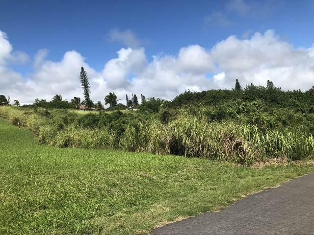 Awa Pae Pl, Naalehu, HI 96772 (MLS #644489) :: Aloha Kona Realty, Inc.