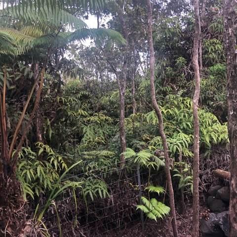 Mokuna Rd, Volcano, HI 96785 (MLS #644554) :: Aloha Kona Realty, Inc.