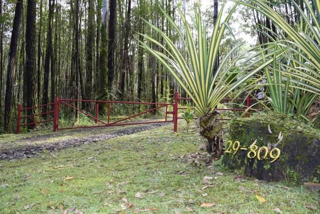 Chin Chuck Rd, Hakalau, HI 96710 (MLS #644611) :: Corcoran Pacific Properties