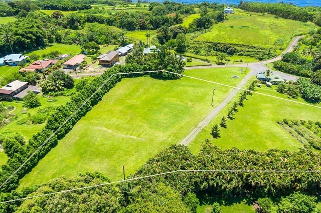 27-1000 Old Mamalahoa Hwy, Pepeekeo, HI 96783 (MLS #644820) :: Team Lally