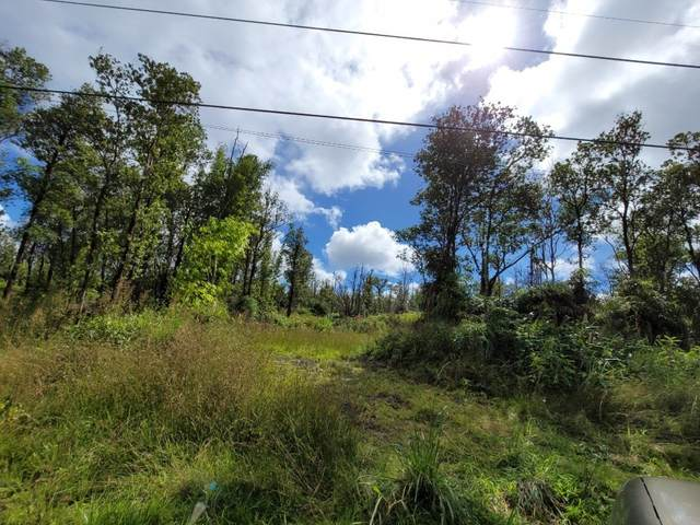 Jungle King Ave, Volcano, HI 96785 (MLS #644835) :: Iokua Real Estate, Inc.