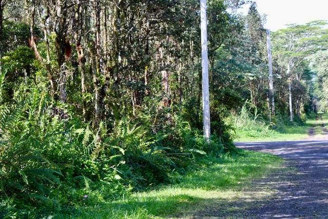 Paradise Rd, Pahoa, HI 96778 (MLS #644857) :: Steven Moody