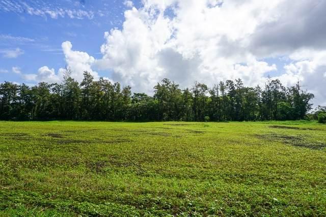 16-2297 Mamaka St, Keaau, HI 96749 (MLS #644984) :: Aloha Kona Realty, Inc.