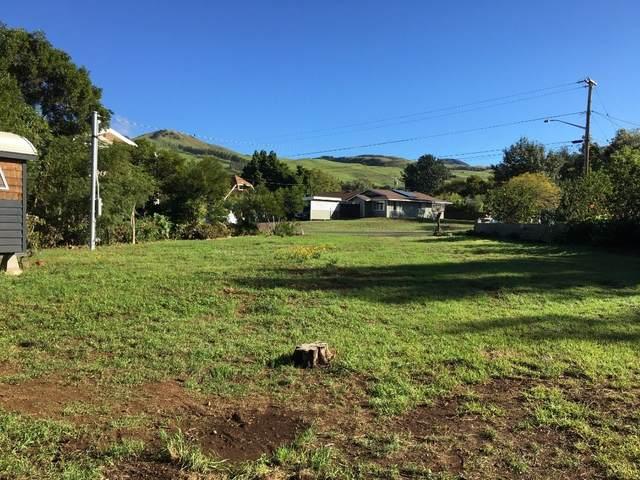 66-1659-A Waiaka Place, Kamuela, HI 96743 (MLS #645188) :: Steven Moody