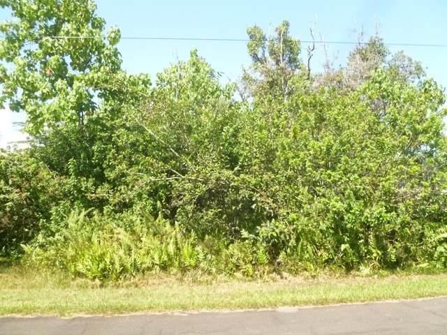 Puulena St, Pahoa, HI 96778 (MLS #645323) :: LUVA Real Estate