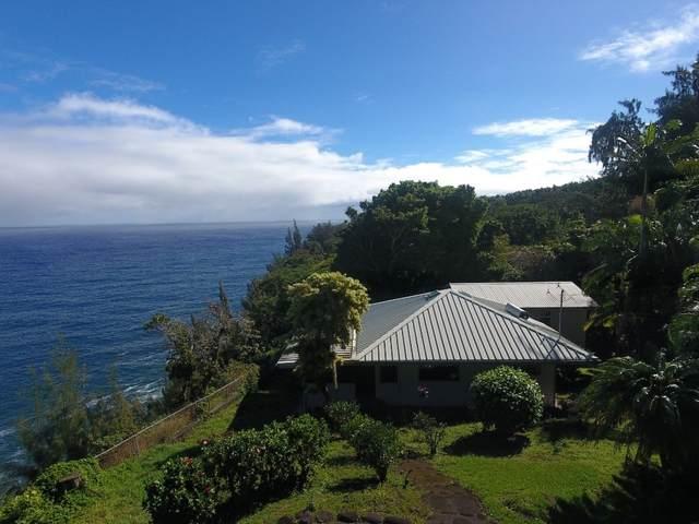 36-2834 Hawaii Belt Rd, Ookala, HI 96774 (MLS #645477) :: Steven Moody
