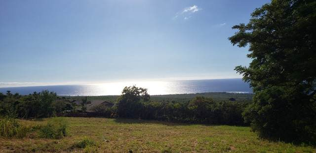 Address Not Published, Captain Cook, HI 96704 (MLS #645516) :: LUVA Real Estate