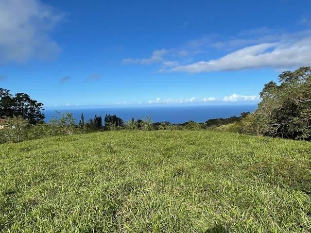 44-3119 Kula Kahiko Rd, Honokaa, HI 96727 (MLS #645543) :: Aloha Kona Realty, Inc.