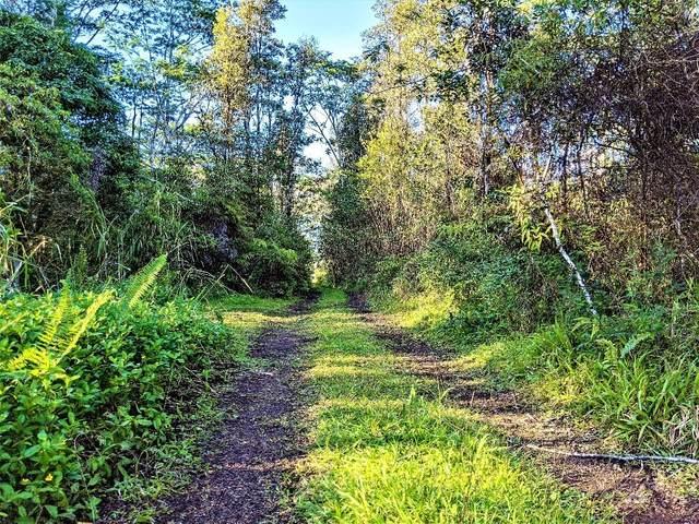 16-2033 CT Sandalwood Ct, Kurtistown, HI 96760 (MLS #645548) :: Aloha Kona Realty, Inc.