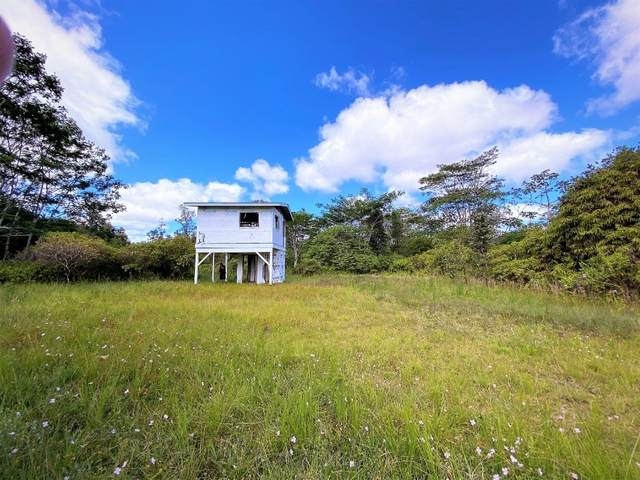 16-1424 Opeapea Rd (Road 7), Mountain View, HI 96771 (MLS #645853) :: Steven Moody