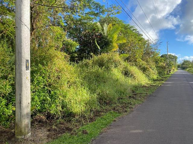 S Kumakahi St, Pahoa, HI 96778 (MLS #645982) :: Aloha Kona Realty, Inc.