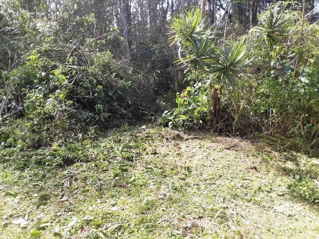 16-2148 Tangerine Dr, Pahoa, HI 96778 (MLS #646018) :: Aloha Kona Realty, Inc.