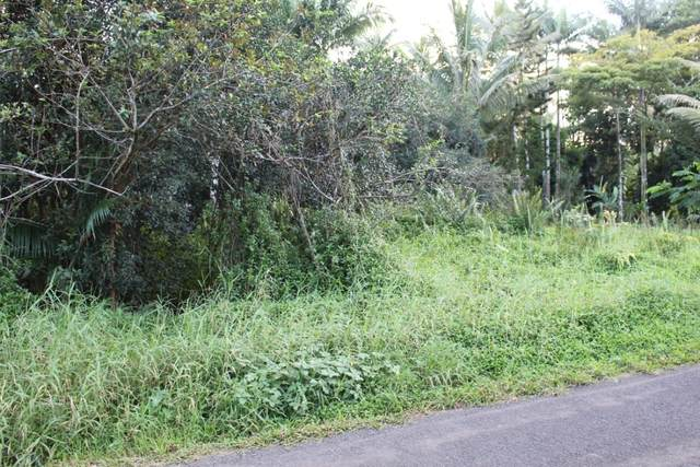 23RD AVE (NAUPAKA), Keaau, HI 96749 (MLS #646055) :: Iokua Real Estate, Inc.