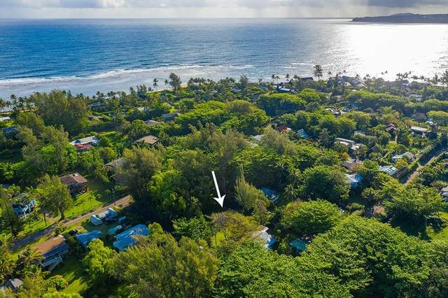 7228 Alamihi Rd, Hanalei, HI 96722 (MLS #646096) :: Kauai Exclusive Realty