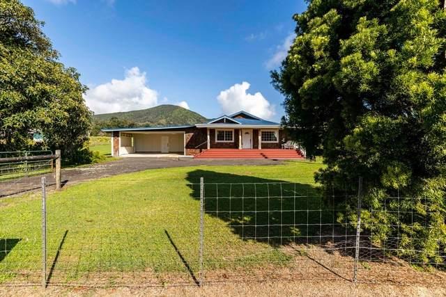 64-550 Mamalahoa Hwy, Kamuela, HI 96743 (MLS #646207) :: Corcoran Pacific Properties