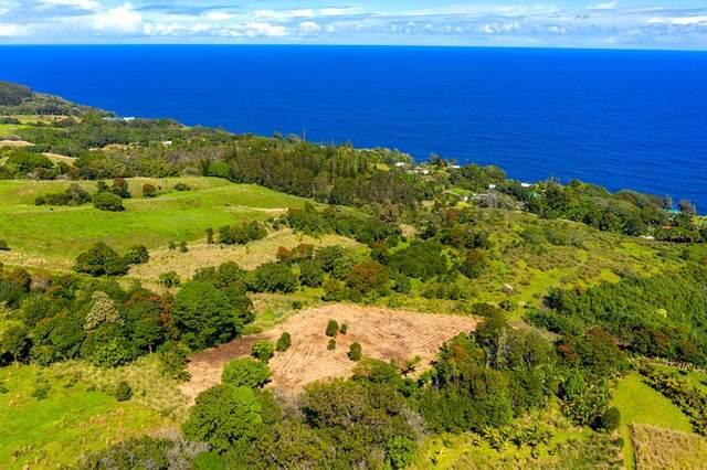 32-899 Old Mamalahoa Hwy, Ninole, HI 96773 (MLS #646253) :: Corcoran Pacific Properties