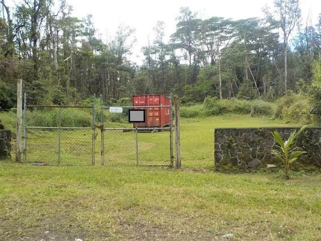 14-3544 Molokai Rd, Pahoa, HI 96778 (MLS #646319) :: Steven Moody