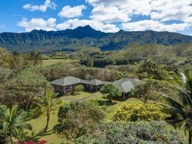 6040-C Kahiliholo Rd, Kilauea, HI 96754 (MLS #646453) :: Corcoran Pacific Properties