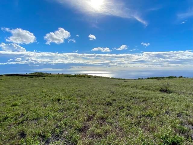 Maluhi St, Kamuela, HI 96743 (MLS #646546) :: Corcoran Pacific Properties