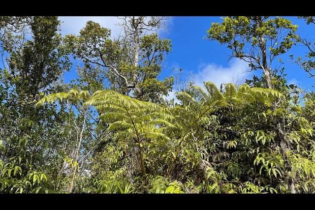 Kokokahi Rd, Volcano, HI 96785 (MLS #646594) :: Aloha Kona Realty, Inc.