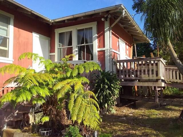 55-477 Hoea Rd, Hawi, HI 96719 (MLS #646683) :: Iokua Real Estate, Inc.