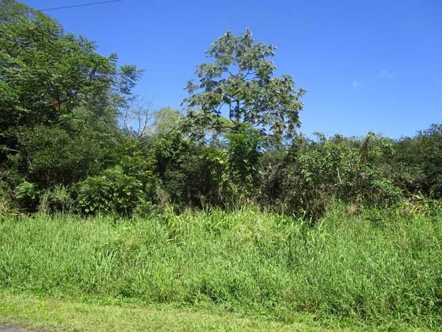 Young Rd, Hilo, HI 96720 (MLS #646847) :: Hawai'i Life