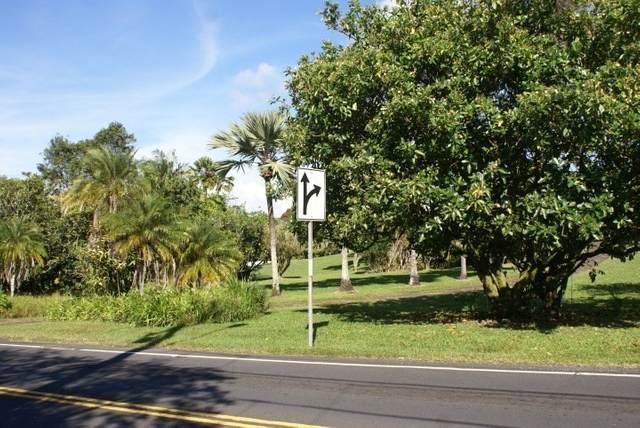 1007 001007, Hilo, HI 96720 (MLS #647034) :: Corcoran Pacific Properties