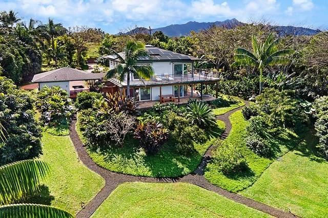2874-A Kauapea Rd, Kilauea, HI 96754 (MLS #647041) :: Steven Moody