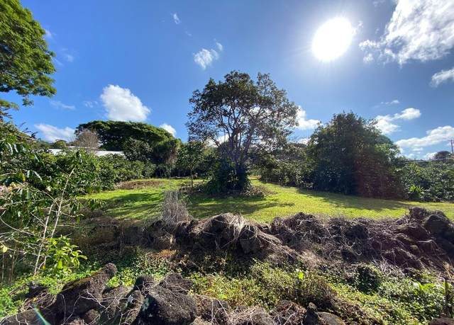76-5883 Mamalahoa Hwy, Holualoa, HI 96725 (MLS #647363) :: LUVA Real Estate