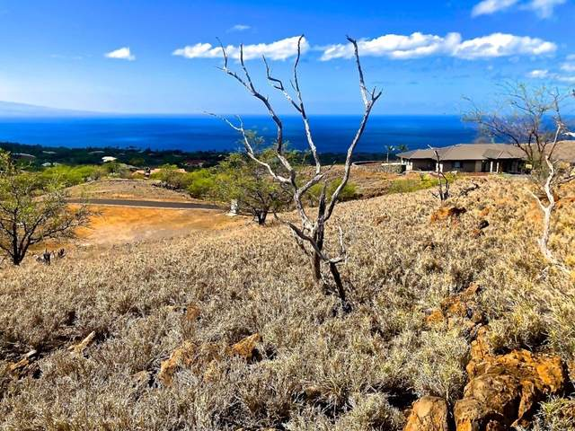Address Not Published, Kamuela, HI 96743 (MLS #647373) :: Aloha Kona Realty, Inc.