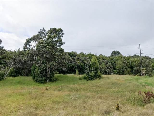 99-1733 Pukeawe Cir, Volcano, HI 96785 (MLS #647392) :: Aloha Kona Realty, Inc.