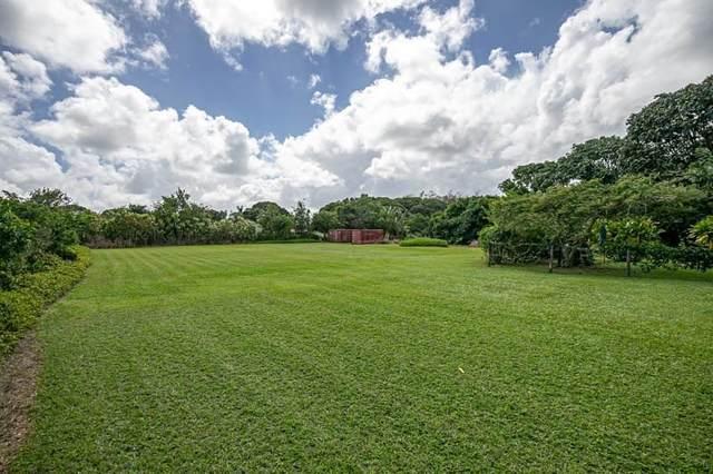 Lokomaikai Pl, Kapaa, HI 96746 (MLS #647578) :: Kauai Exclusive Realty