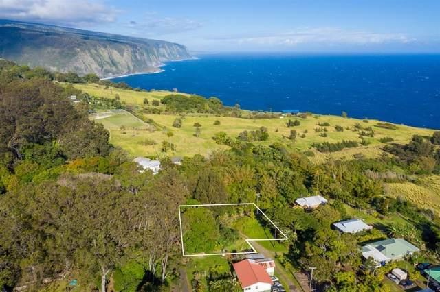 Address Not Published, Honokaa, HI 96727 (MLS #647649) :: Aloha Kona Realty, Inc.