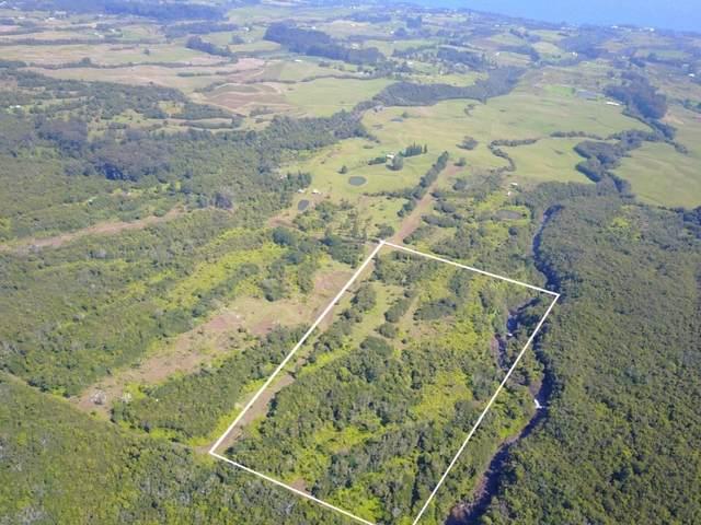 Address Not Published, Laupahoehoe, HI 96764 (MLS #647665) :: Corcoran Pacific Properties