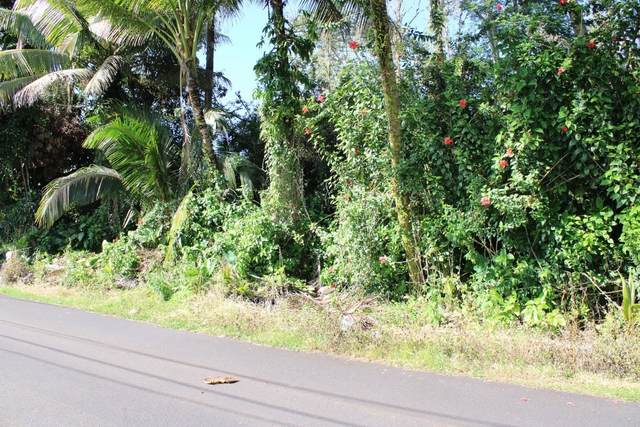 N Ina St, Pahoa, HI 96778 (MLS #647810) :: LUVA Real Estate