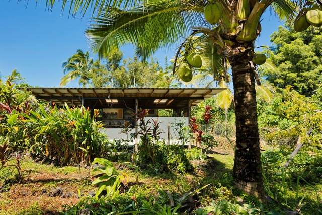 12-154 Mapuana Ave, Pahoa, HI 96778 (MLS #647826) :: Iokua Real Estate, Inc.