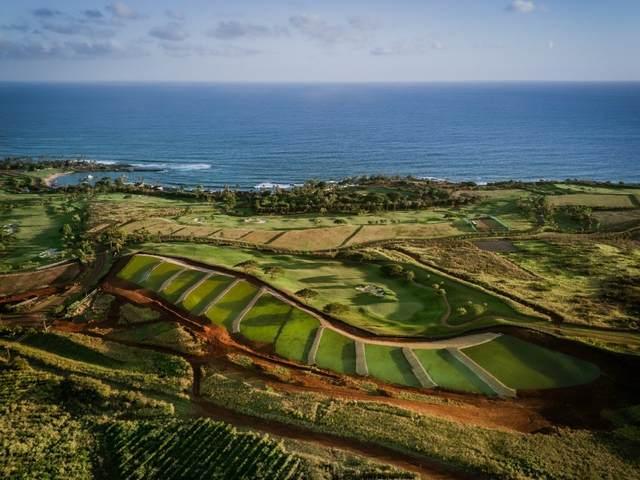 6 Hiki Moe Pl, Koloa, HI 96756 (MLS #647898) :: Kauai Exclusive Realty