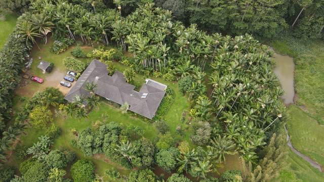1684-B Huli Road, Kilauea, HI 96754 (MLS #647902) :: Iokua Real Estate, Inc.