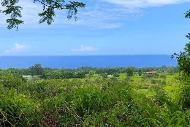 Kaiwiki Homestead Road, Hakalau, HI 96710 (MLS #648033) :: Corcoran Pacific Properties