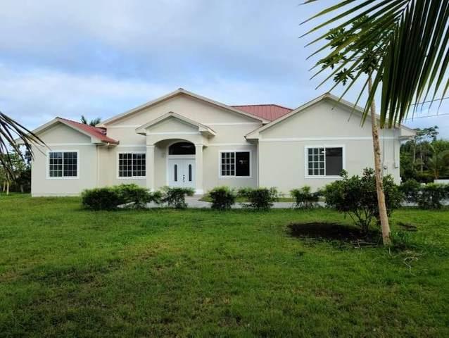 15-1535 1ST AVE, Keaau, HI 96749 (MLS #648301) :: Corcoran Pacific Properties